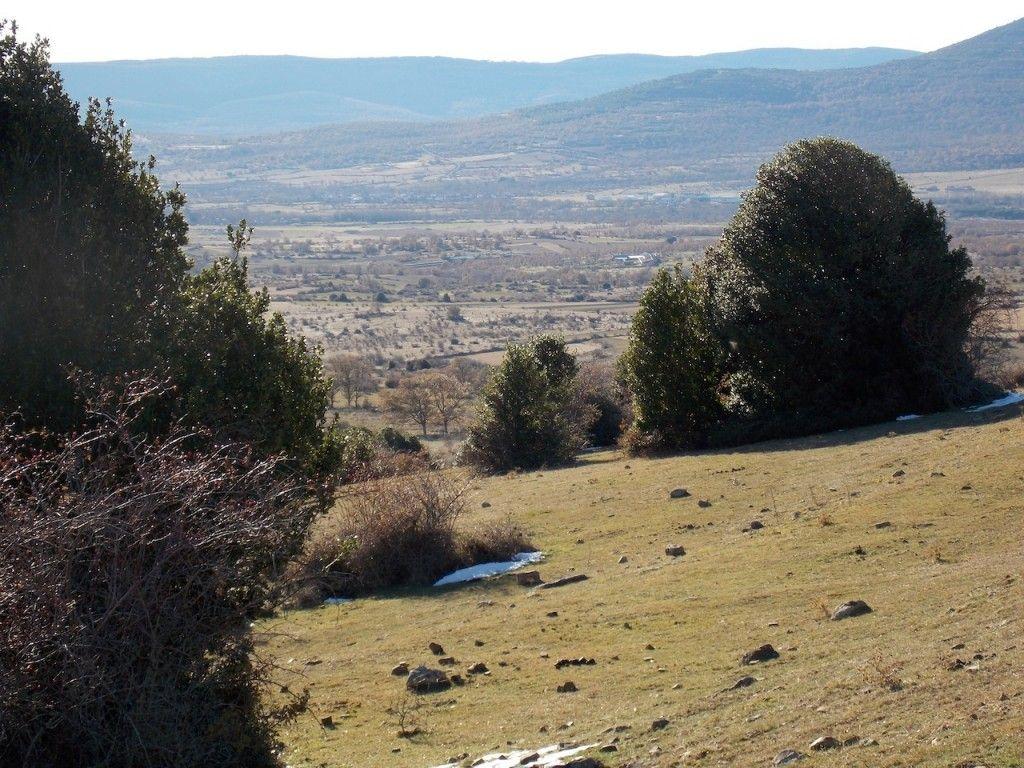 Acebal de Garagüeta, senderismo en Soria