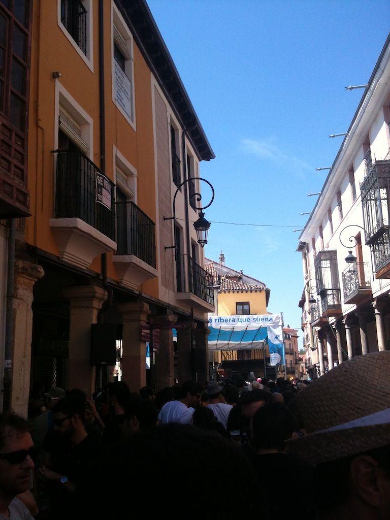 plaza trigo