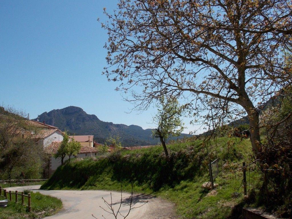 Valle de Caderechas, ruta de los cerezos en flor