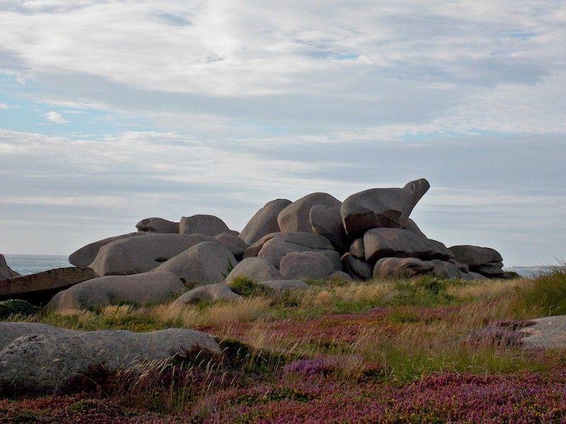 Una piedra con forma de oso en la costa Rosa