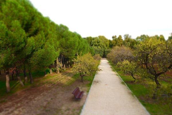 Jardines de Madrid en la Quinta de los Molinos