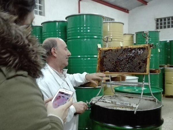 Miel en una ruta de 2 días en Sierra de Gata