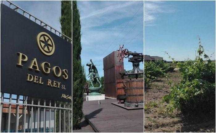 Museo del vino de Toro