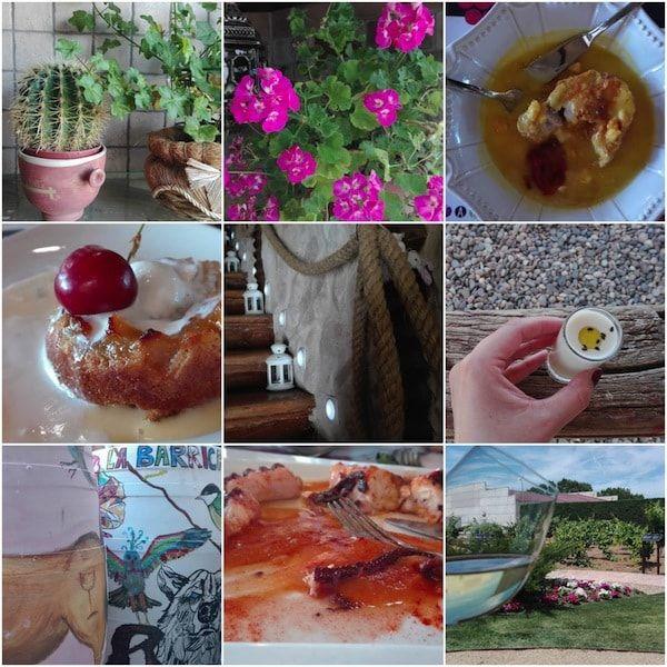Visita y experiencia de enoturismo en el Museo del vino de Toro