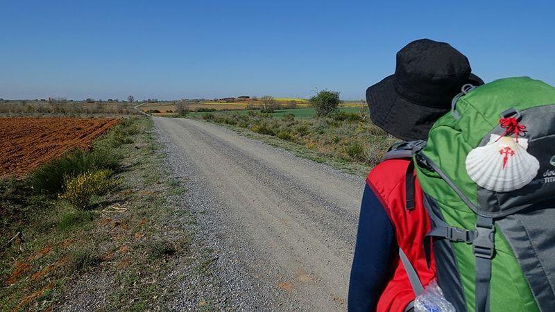Camino de Santiago, Palencia