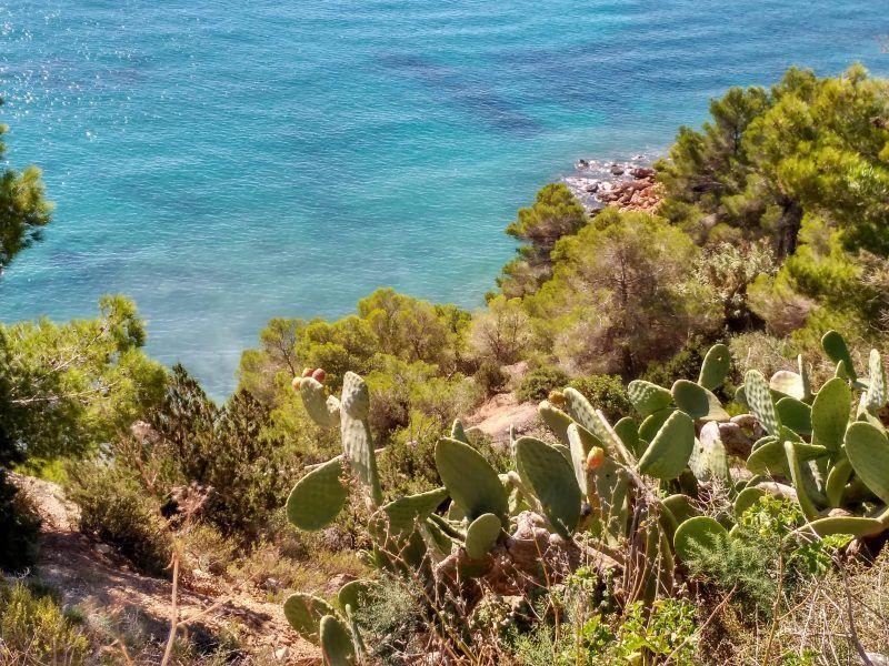 El mar de Ibiza