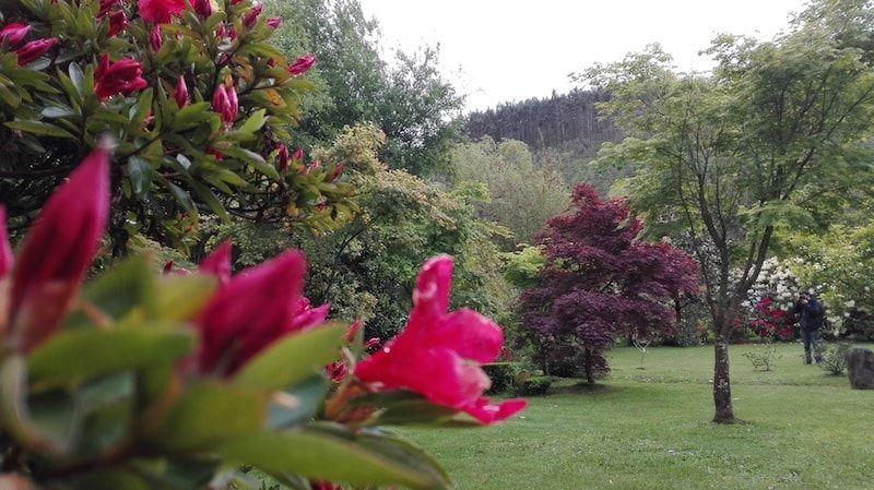 Jardín botánico en San Martín plan para viajar a Galicia