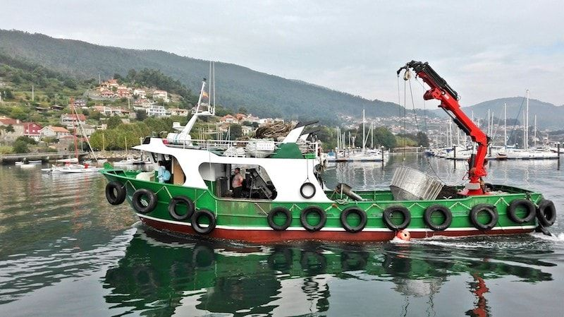 Viajar a Galicia para ver la vida marinera