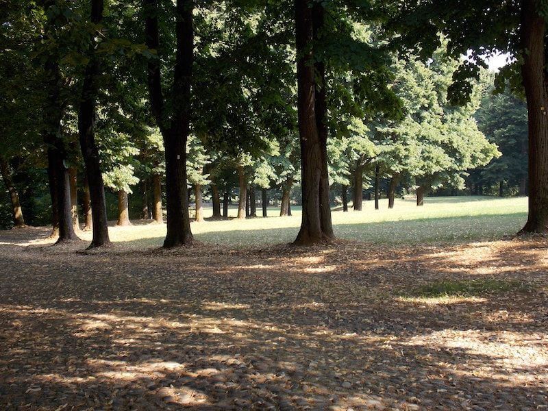 Parque de la Mandria parar ir cerca de Torino