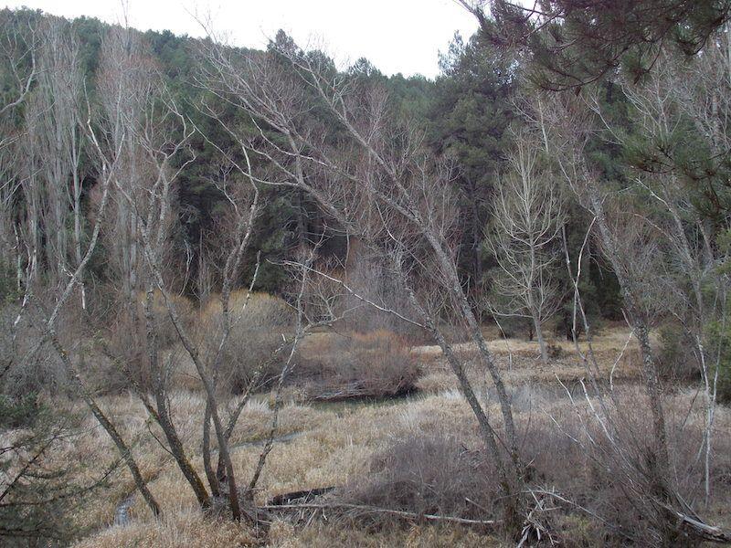 Paisaje de invierno en el Cañón de Lobos