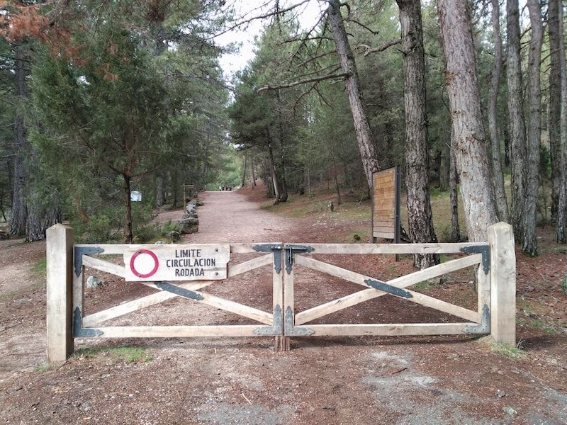 Por dónde conducir en el parque del Río Lobos