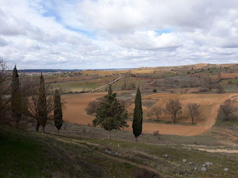 Ribera del Duero en primavera