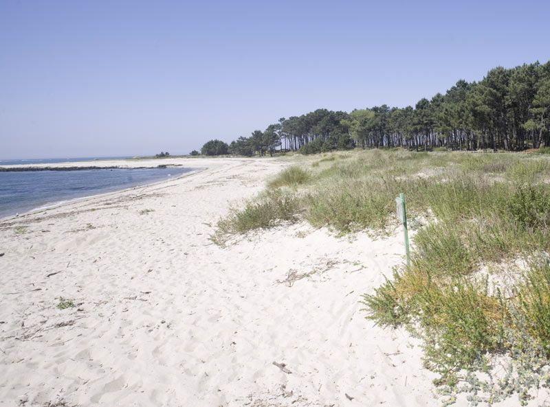 Playa en la desembocadura del Miño