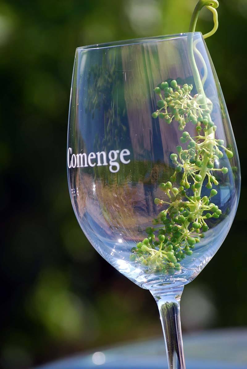 copa vino Comenge
