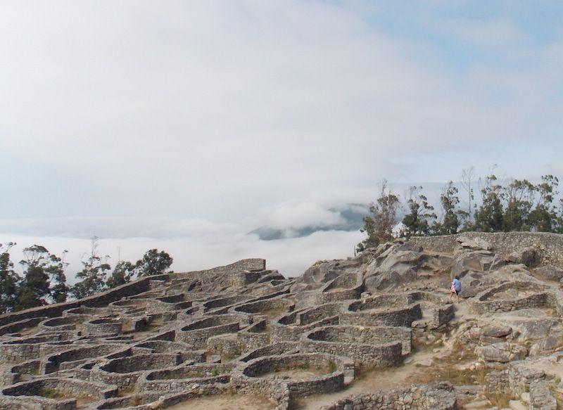 Excursión en las Rías Baixas para visitar un castro