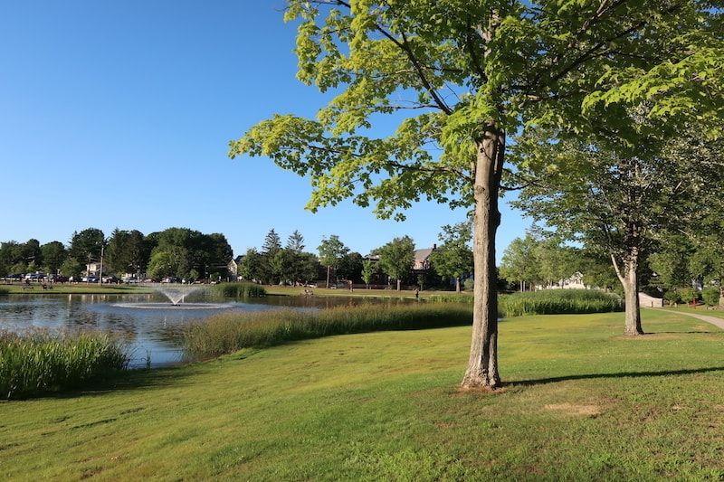 Jardines cerca GuestToGuest en Concord
