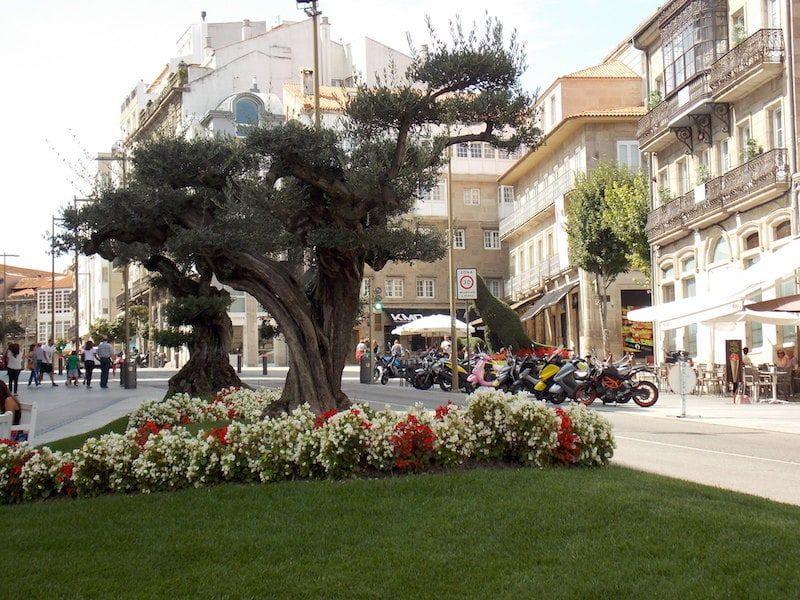 Imprescindible en Vigo en un día