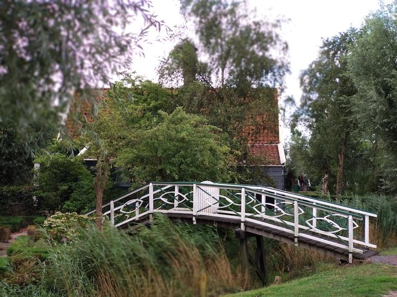Visitar molinos en Holanda y canales