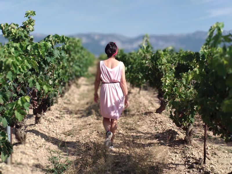 Muriel Wines, la esencia del vino de Rioja