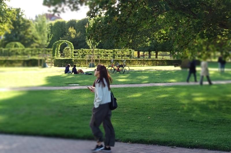 Un día en Copenhague de picnic