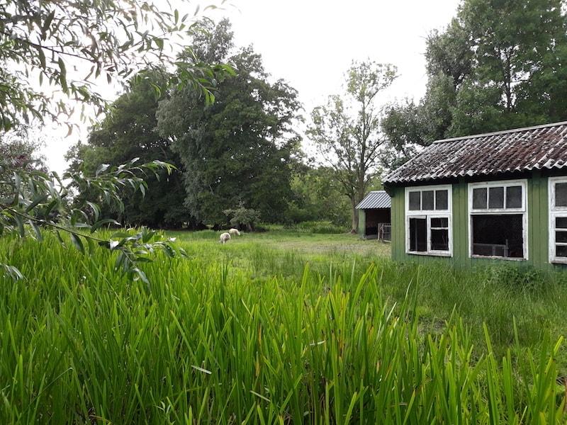 cómo ir a los pueblos más bonitos de Holanda