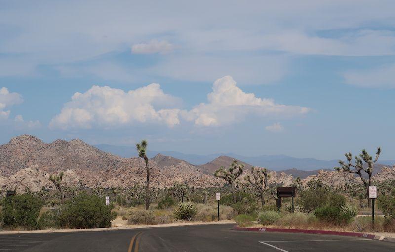 paisaje en Joshua Tree