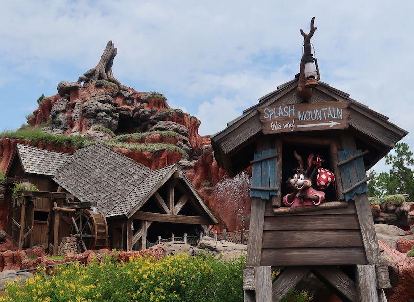 Atracciones Magic Kingdom para adultos
